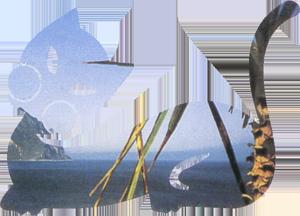 logo_pocho